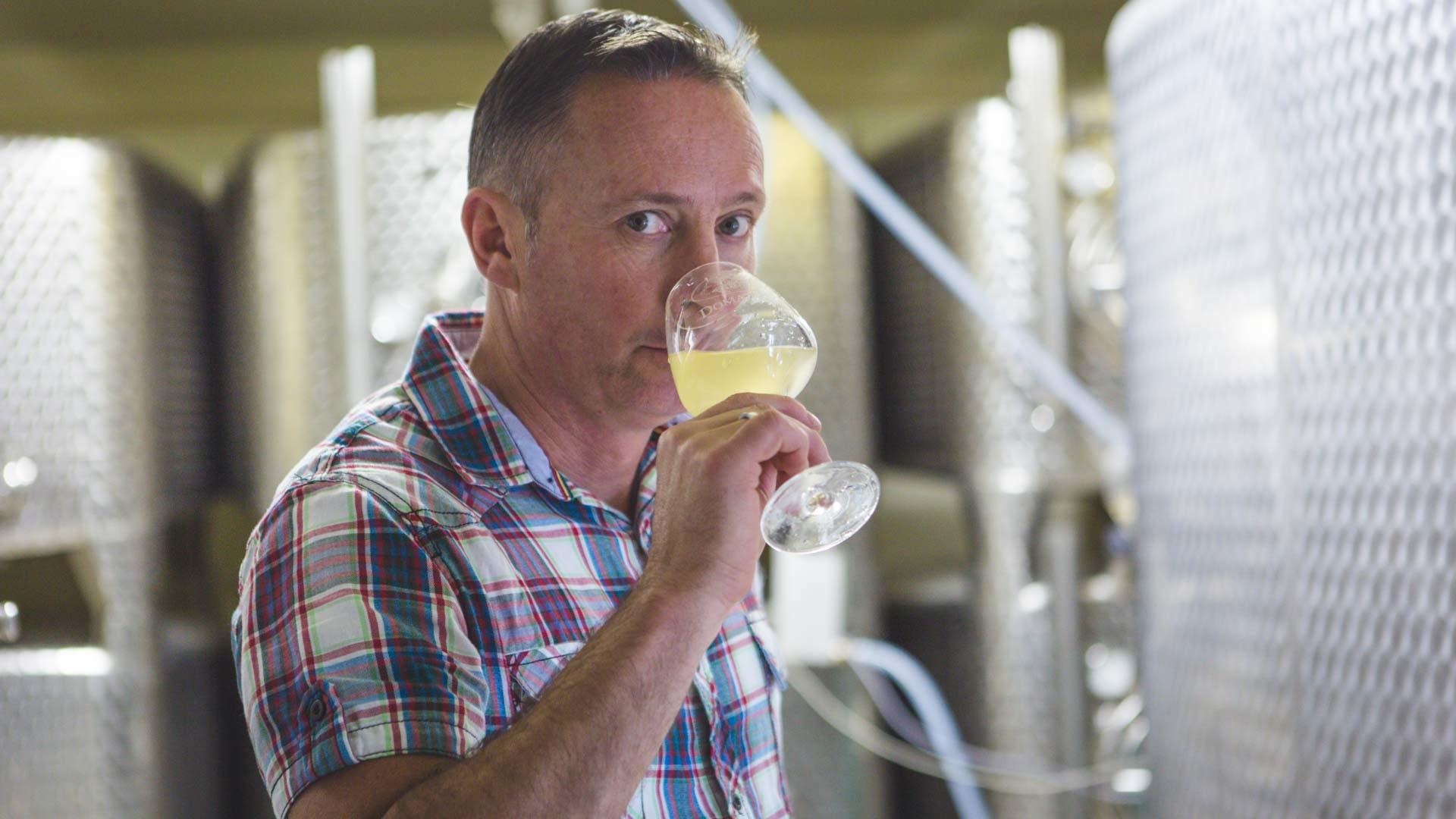 Visite & Dégustation de Vins en Alsace